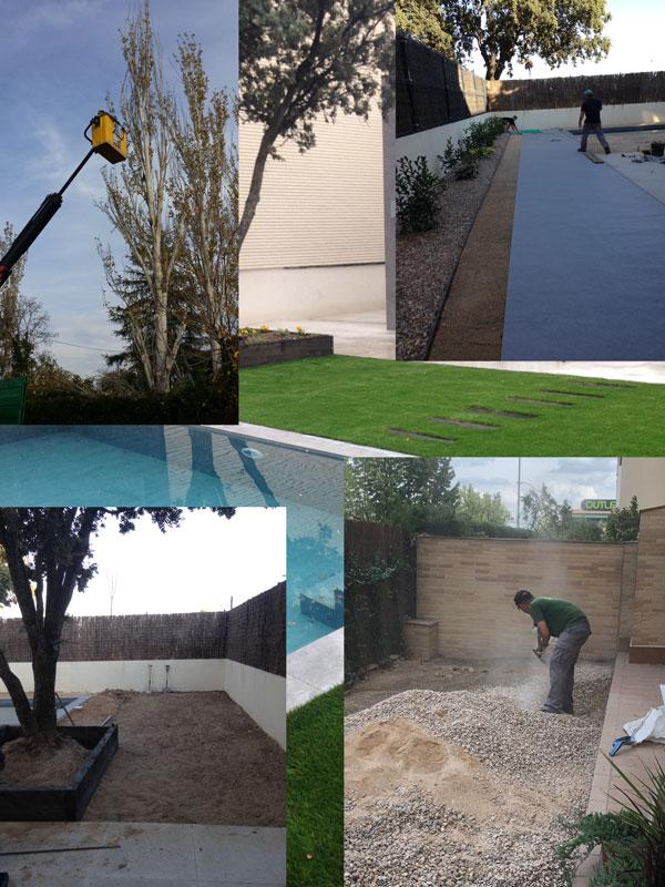 jardinería Daico, empresa de jardinería en Brunete